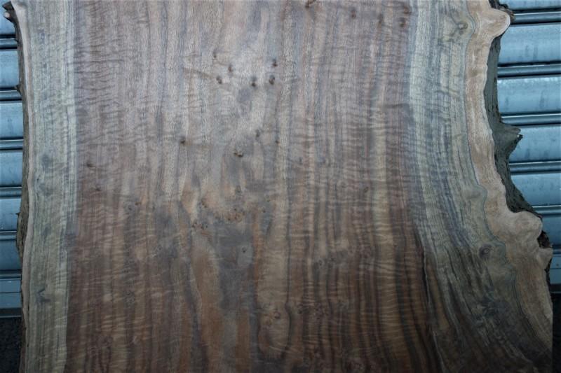 クラロウォルナット Claro walnut 一枚板 A❸_e0156341_07392016.jpg