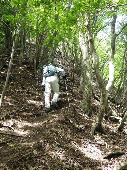 昨日のリベンジで英彦山へ_e0164643_16090871.jpg
