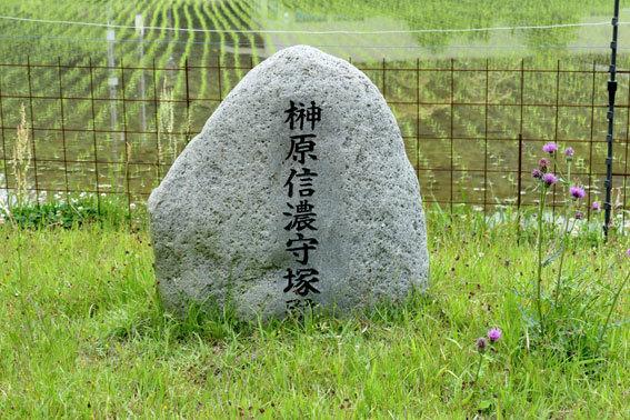 榊原さんのふるさと_b0145296_14480047.jpg