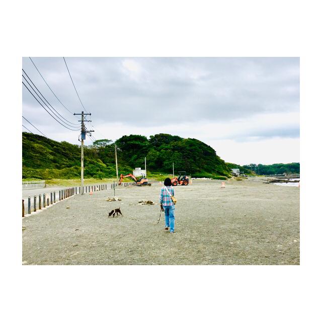 海散歩_d0343297_15580568.jpg
