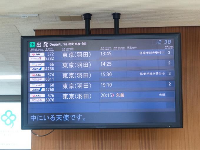 「とかち帯広空港」現在1日4便、飛行機の離発着を見学!_f0276498_23352984.jpg