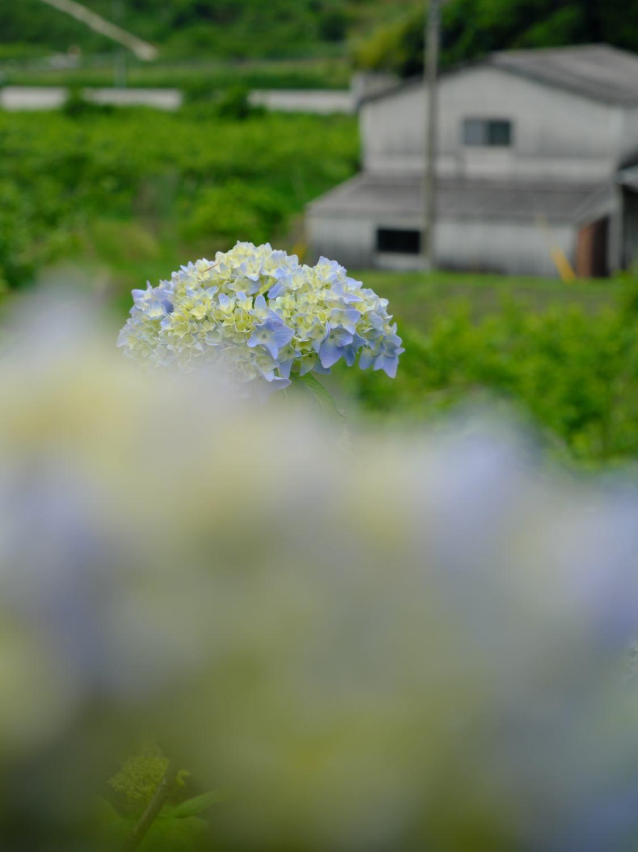 今日の風景_d0355116_21181483.jpg
