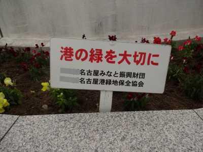 名古屋港水族館前花壇の植栽R3.5.12_d0338682_15104901.jpg