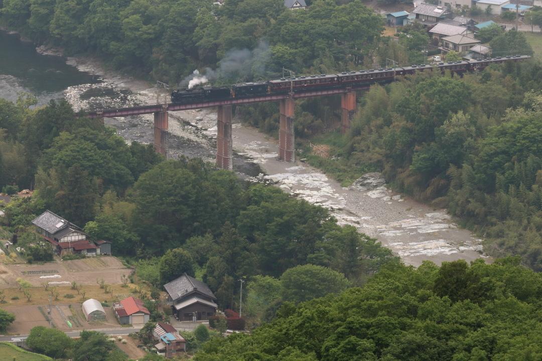 緑に囲まれた鉄橋 - 2021年春・秩父鉄道 - - ねこの撮った汽車