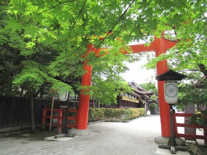下賀茂神社 深緑の森を本殿へ_e0048413_14524241.jpg