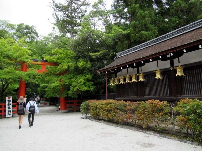 下賀茂神社 深緑の森を本殿へ_e0048413_14524874.jpg