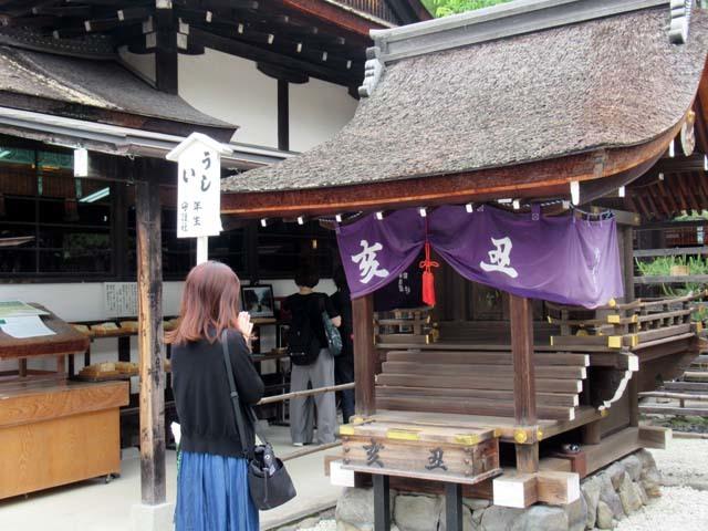 下賀茂神社 深緑の森を本殿へ_e0048413_14530048.jpg