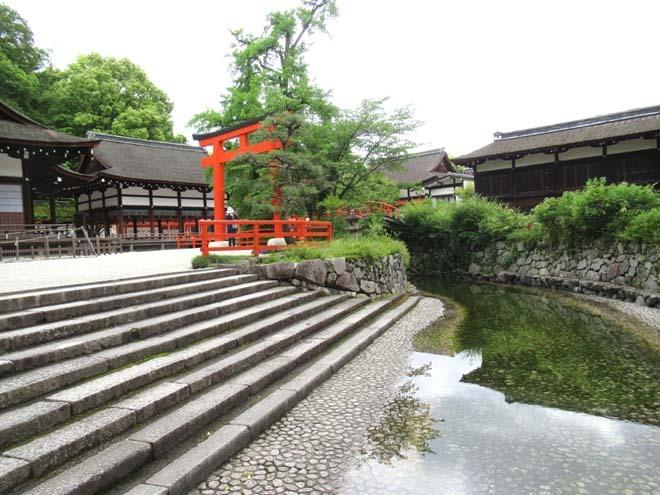 下賀茂神社 深緑の森を本殿へ_e0048413_14533469.jpg