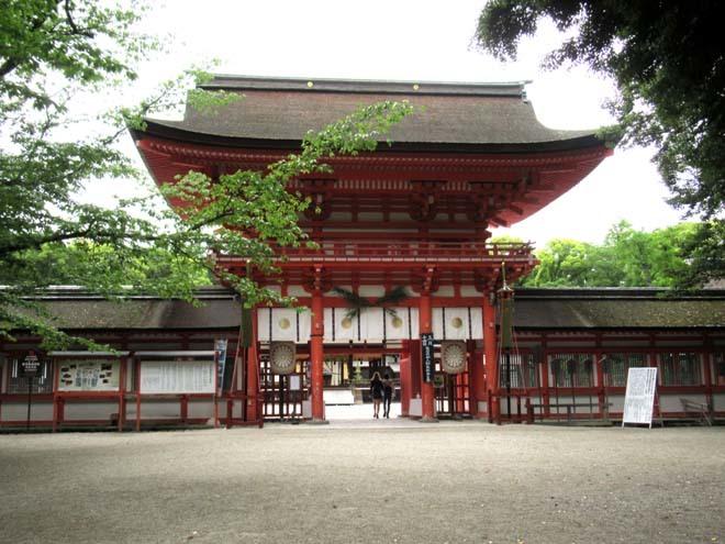 下賀茂神社 深緑の森を本殿へ_e0048413_14535304.jpg