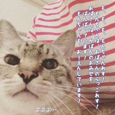 小さな幸せ_c0087521_18423996.jpg