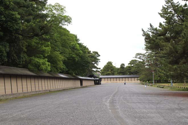 京都御苑 みどリが盛り1_e0048413_14171565.jpg