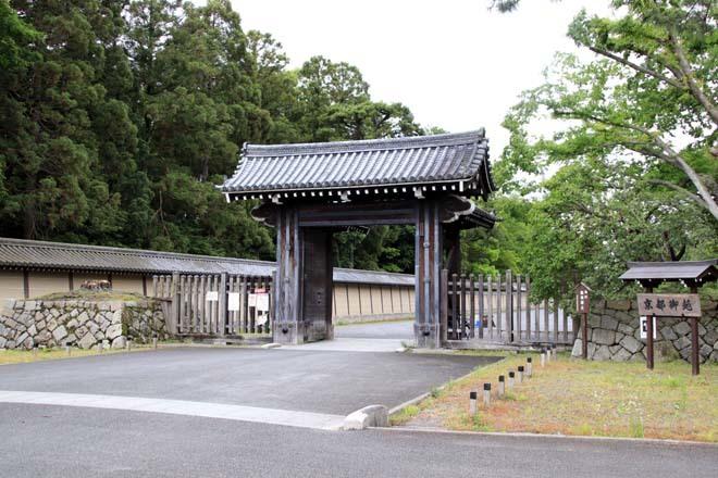 京都御苑 みどリが盛り1_e0048413_14172776.jpg