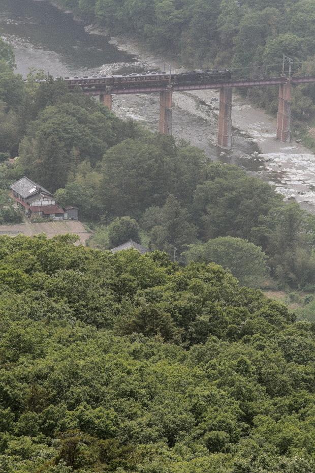 新緑の向こうの鉄橋を汽車が帰っていく - 2021年春・秩父鉄道 - - ねこの撮った汽車
