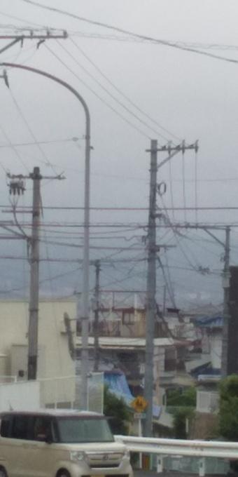 広島大雨警報、懸念されるお年寄りの衰弱_e0094315_08250440.jpg