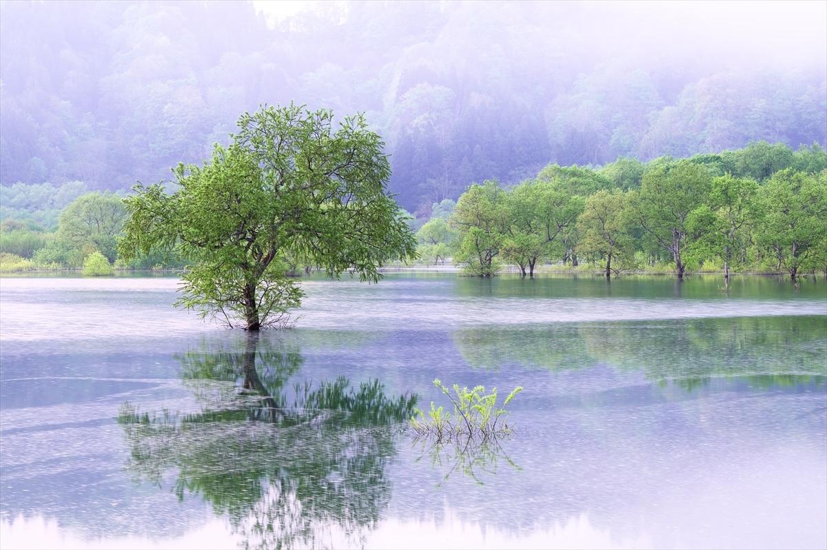 白川ダム湖岸公園 2_f0018464_17350576.jpg