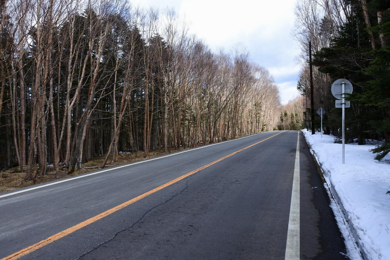長野そぞろ歩き:八ヶ岳をドライブ_f0049074_07410166.jpg