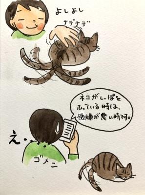 猫がしっぽを振る時_f0072976_00245624.jpeg