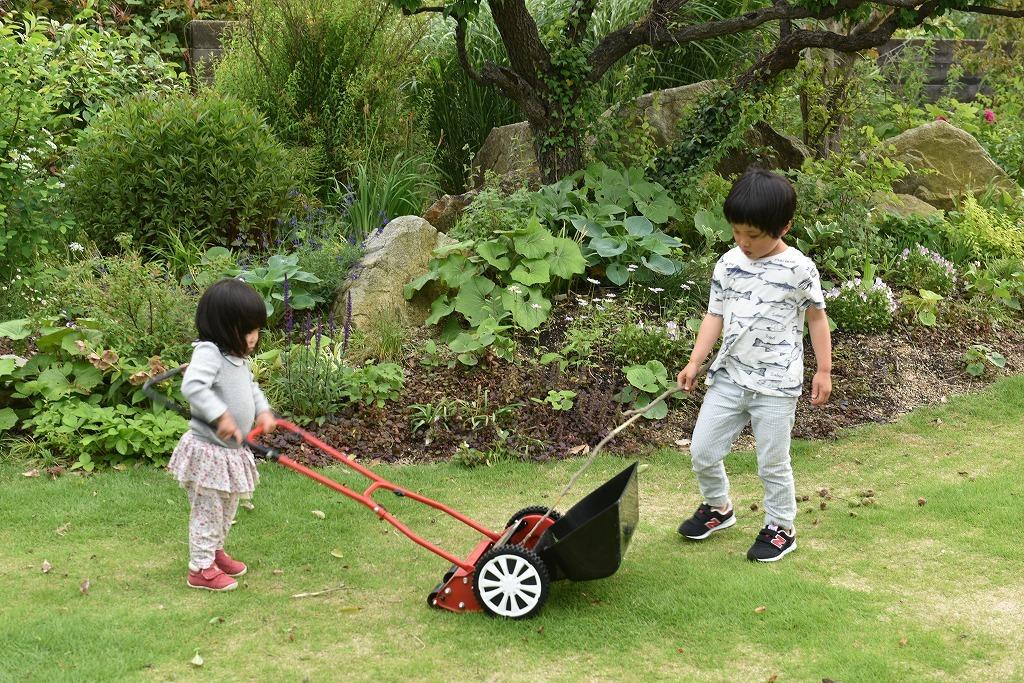 芝刈り_e0174477_09340006.jpg