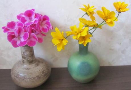 小さな庭の花木_c0220597_21200243.jpg