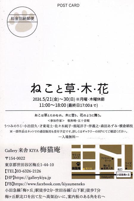 ねこと草 木 花展_e0195115_08273361.jpg