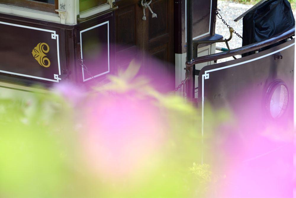 品川燈台電停付近のツツジと京都市電_e0373930_20221045.jpg