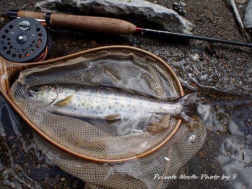 昨日の釣り_d0261148_16342038.jpg