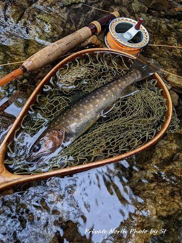 昨日の釣り_d0261148_16342654.jpg