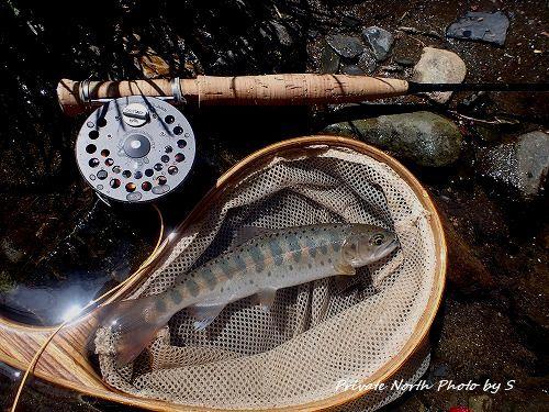 昨日の釣り_d0261148_16344004.jpg