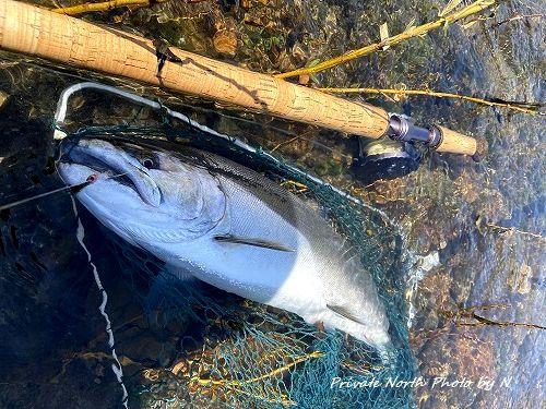 昨日の釣り_d0261148_16344600.jpg