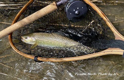 昨日の釣り_d0261148_16345122.jpg