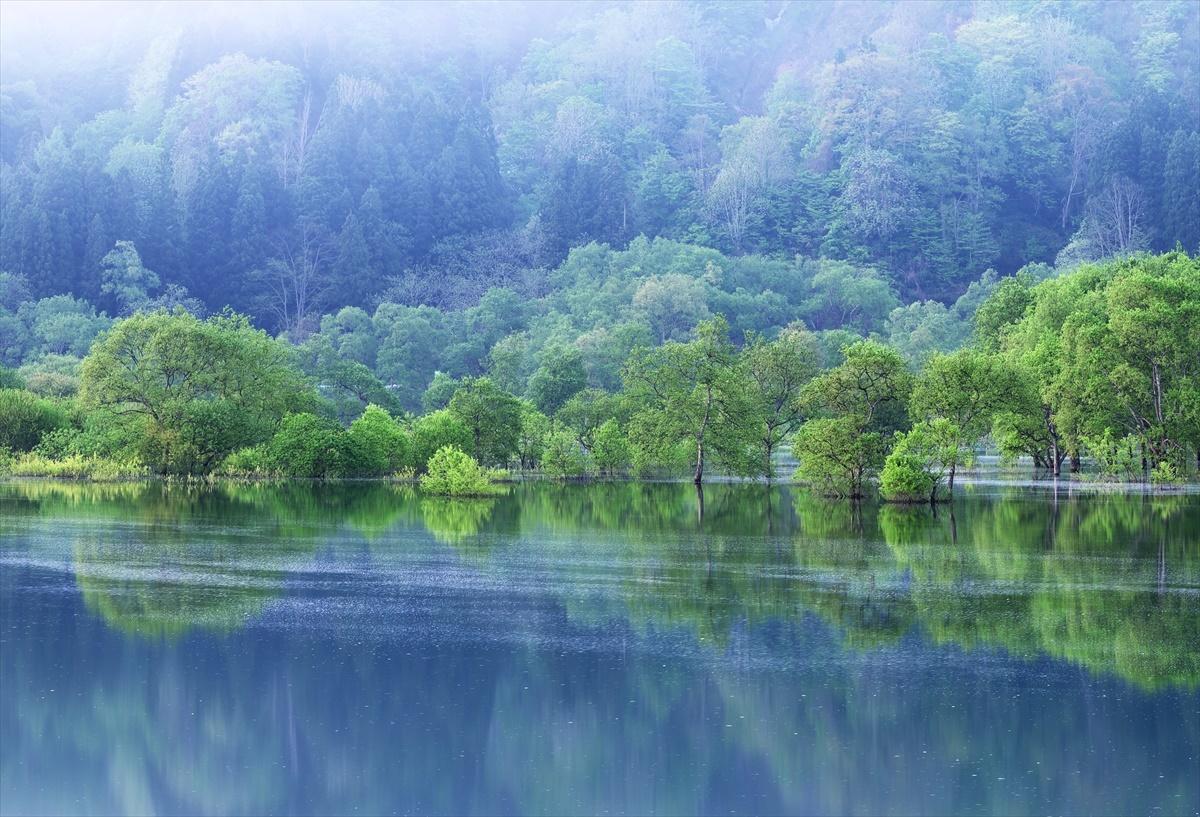 白川ダム湖岸公園 3_f0018464_09480447.jpg