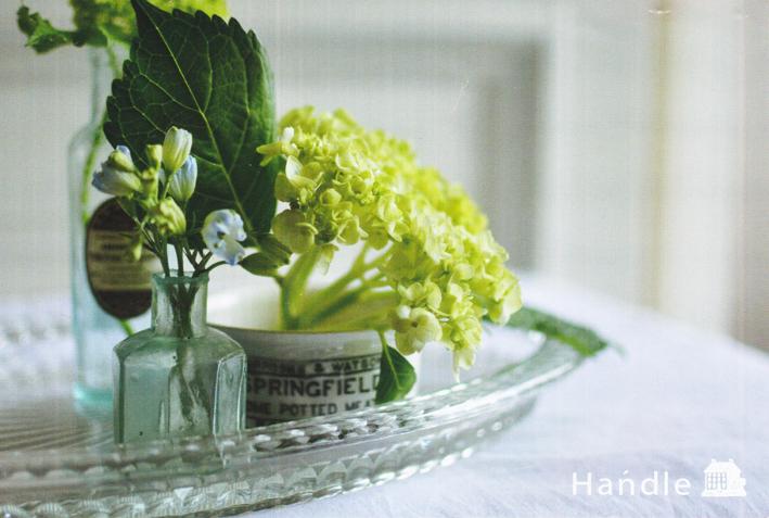 花の癒し。_b0365901_23045084.jpg