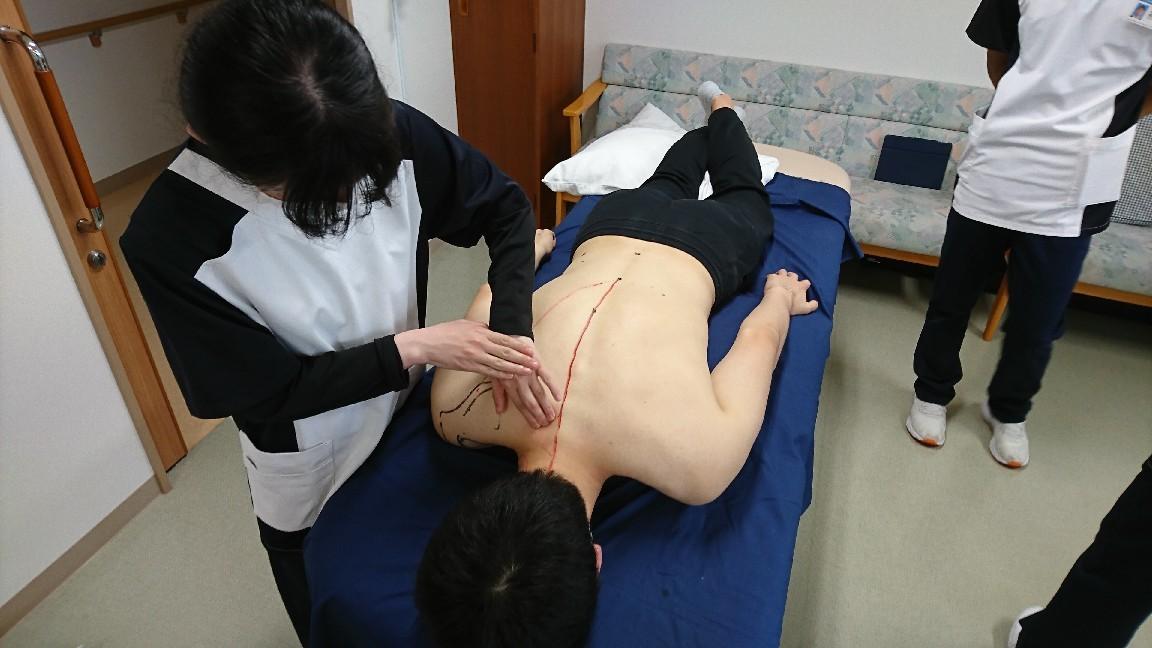 第188回TOC体表解剖勉強会 僧帽筋の触察_b0329026_16021120.jpg