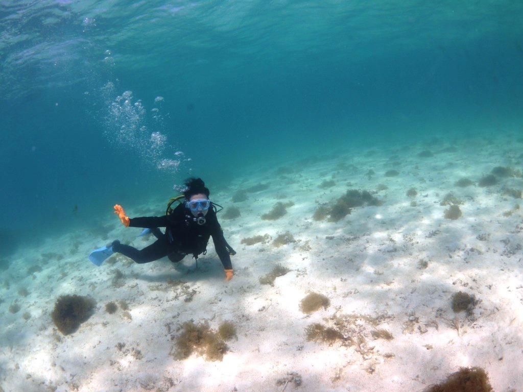 美しい海で体験ダイビング~♪_a0189838_09284684.jpg