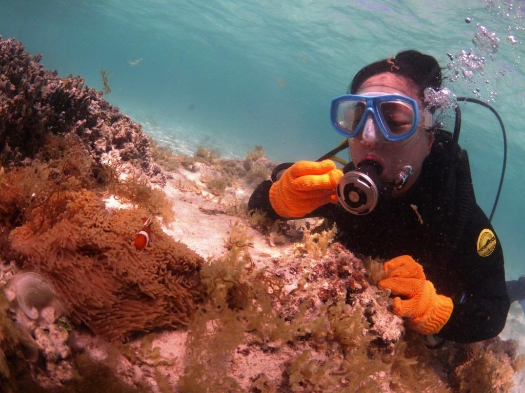 美しい海で体験ダイビング~♪_a0189838_09313205.jpg