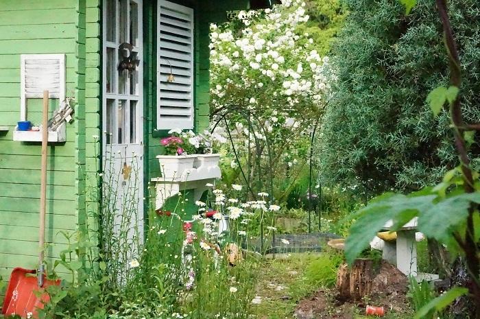 白のお花がいっぱい_e0365880_19213279.jpg