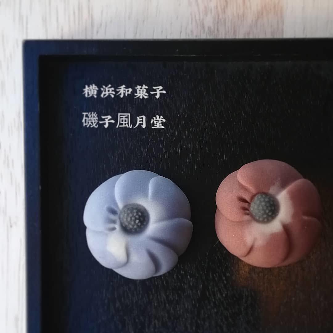 北欧茶会 天然色素で染めたレトロな青いアネモネ 磯子風月堂_e0092594_22050217.jpg