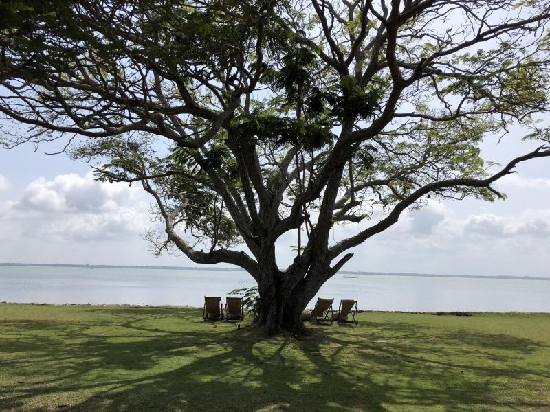 ニゴンボのバワホテル、ジェットウィングラグーン_d0116009_10020898.jpg