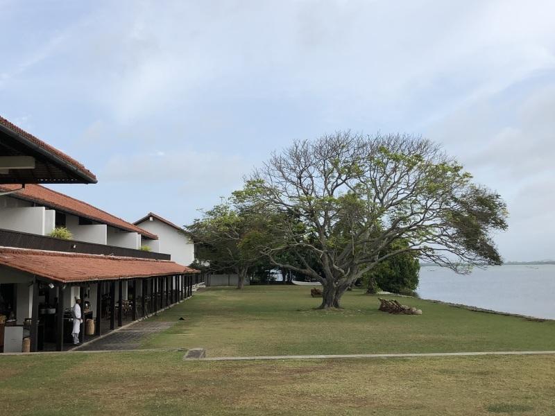 ニゴンボのバワホテル、ジェットウィングラグーン_d0116009_10333649.jpg