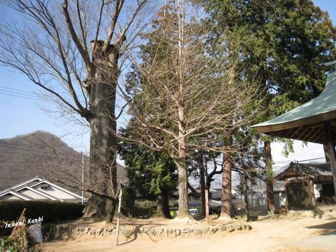 古奈為神社(こなえじんじゃ、西脇市)_d0287413_19264837.jpg