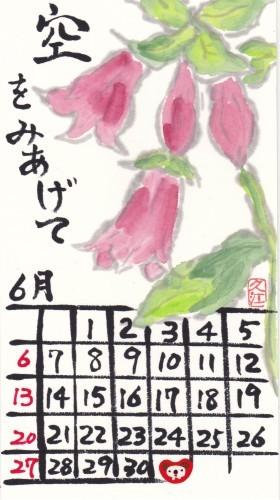 古川 2021年6月 ホタルブクロ_b0124466_15592955.jpg