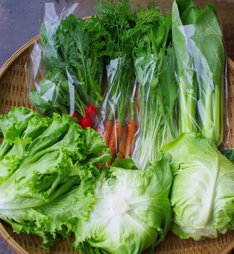 野菜セット単発便(5/22着)_c0110869_11552602.jpg