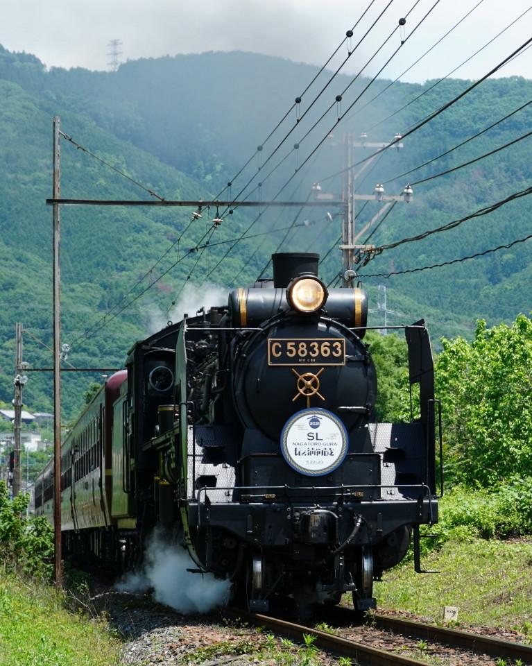 麦畑を行くSL長瀞蔵号とEL貨物列車ー2021年5月23日ー_a0385725_21572058.jpg