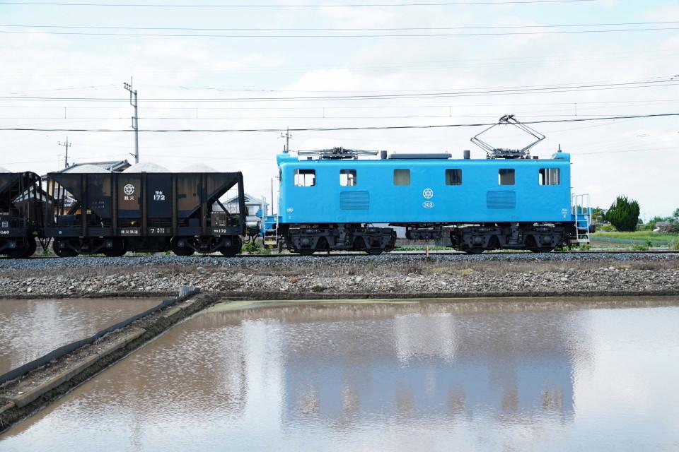 麦畑を行くSL長瀞蔵号とEL貨物列車ー2021年5月23日ー_a0385725_21575448.jpg