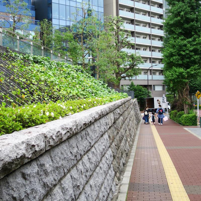神田で山登り_c0060143_10552525.jpg
