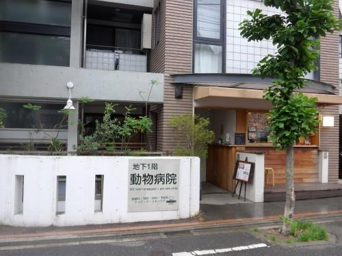 多摩川「hiff cafe ヒフカフェ」へ行く。_f0232060_17555827.jpg