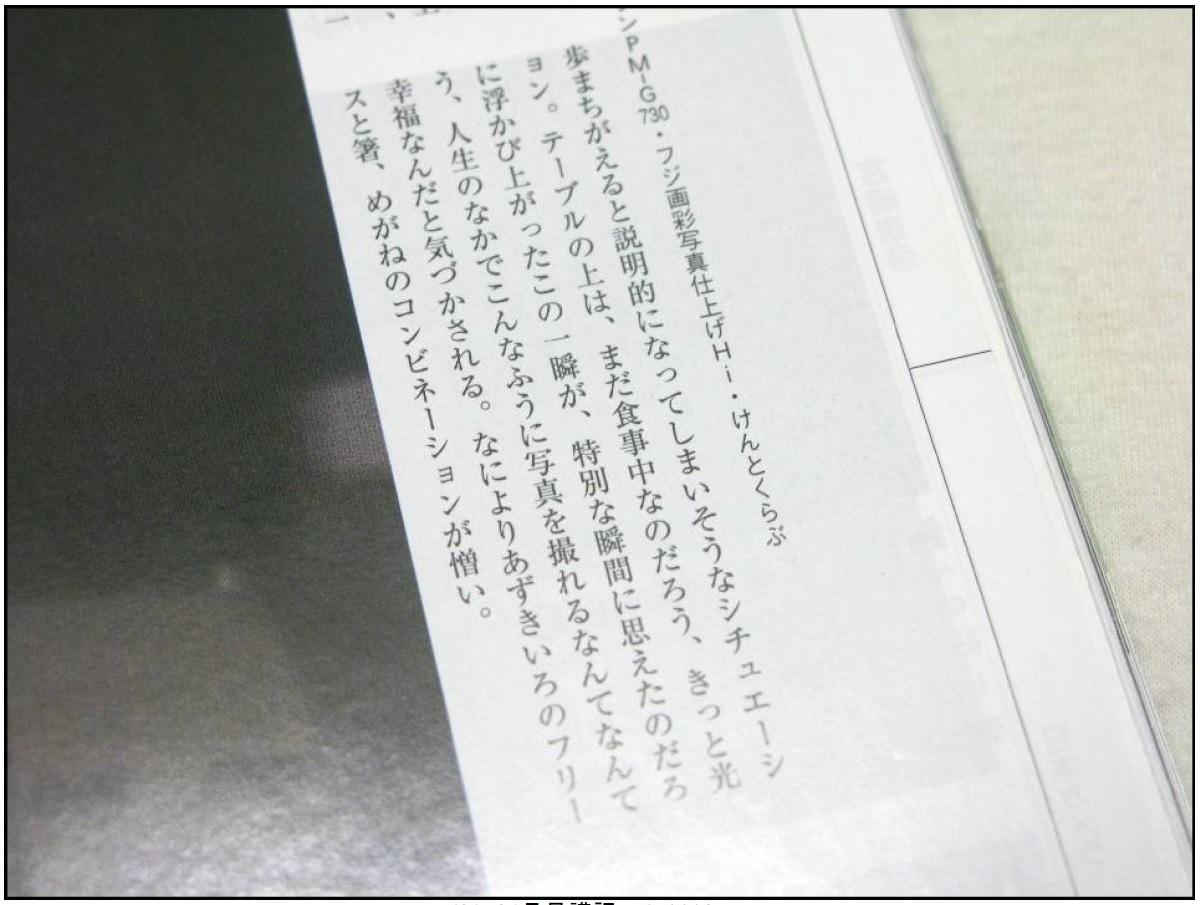 ★日本カメラのない月末1★_c0135079_20165164.jpg