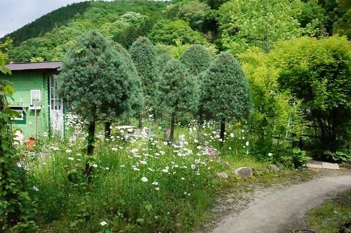 小道を広げて、庭に車が入るように_e0365880_21195227.jpg