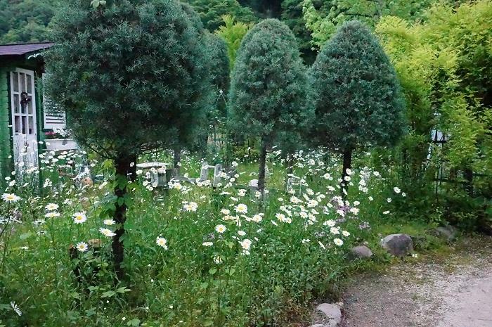 小道を広げて、庭に車が入るように_e0365880_21204254.jpg