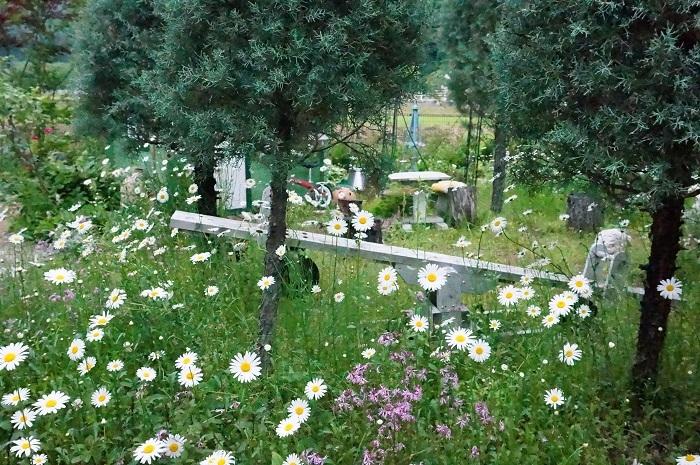 小道を広げて、庭に車が入るように_e0365880_21210094.jpg